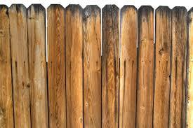 גדר במבוק איכותית