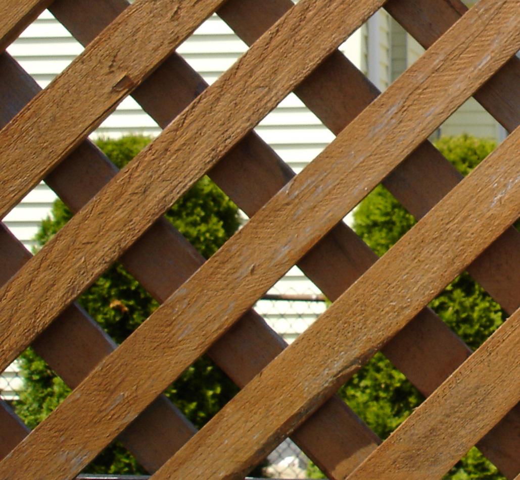 בניית גדר